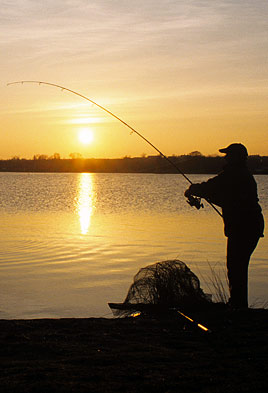 Carp angler casting out silhouetted by the sun